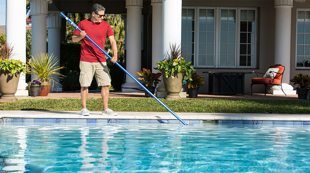 brushing pool debris skimmer net