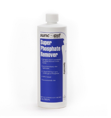 phosphate remover pool stain